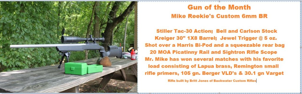 Mr Mike Gun of the Month