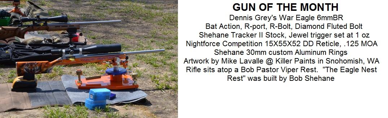 Dennis Grey's Gun of the Month