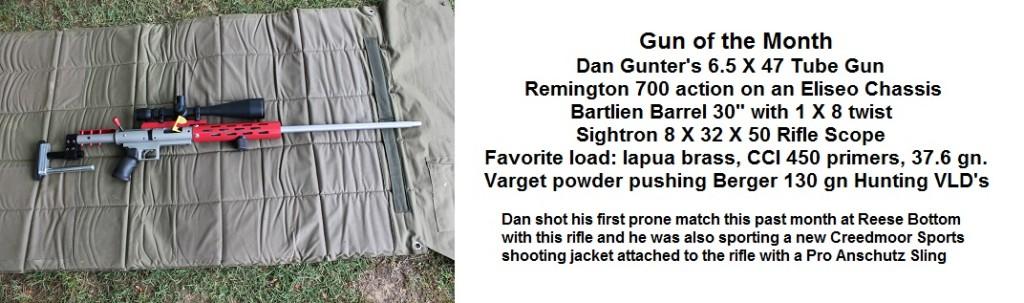Dan's Gun of the Month