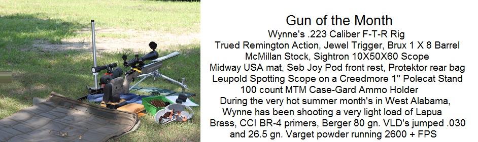 Wynne's Gun of the Month
